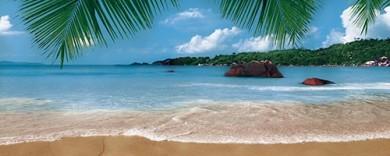 Плаж Вог